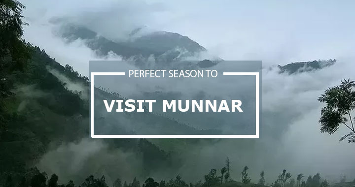 Awesome Resort in Munnar on winter season